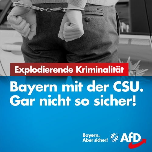 AfD 3.jpg