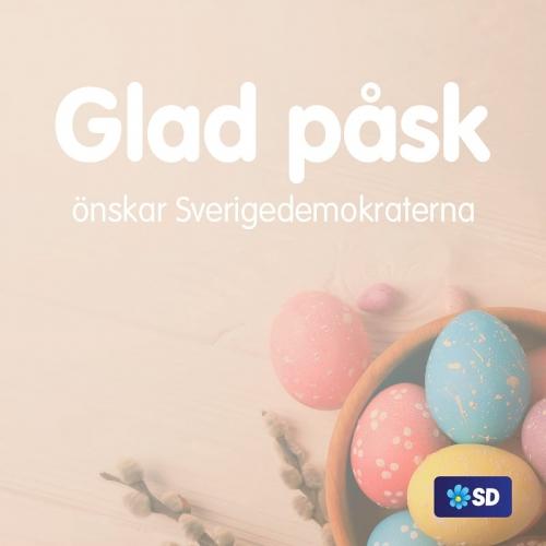 SD 1.jpg