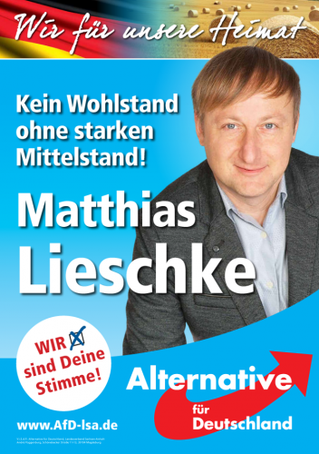 AfD 7.png