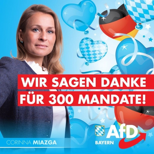AfD Bavière 1.jpg