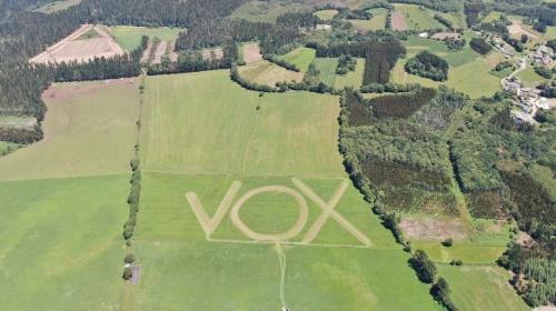 Vox 1.jpg