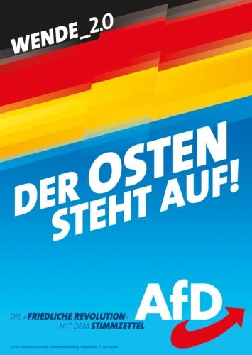 AfD 6.jpg